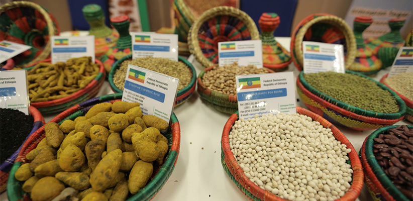 Canada Pulses Exporting Nations India