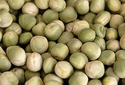 canadian organic whole green peas