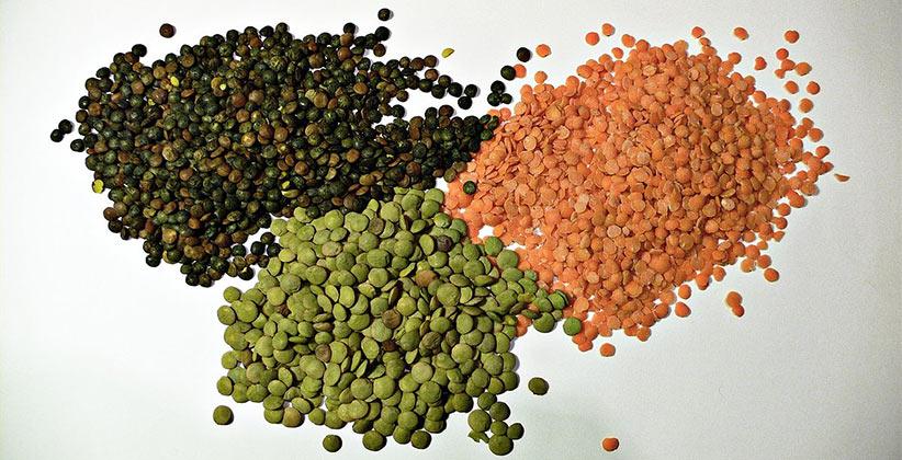 lentils nutritional powerhouses