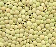 lentils richlea product