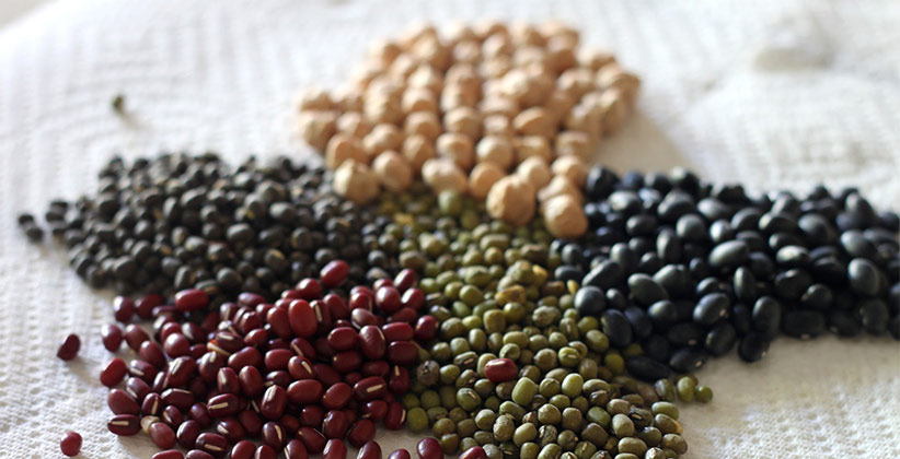 pulses for health