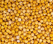 Whole Yellow Peas Product